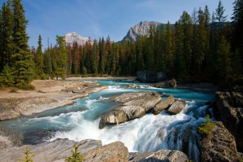yoho-national-park-river_37164_600x450